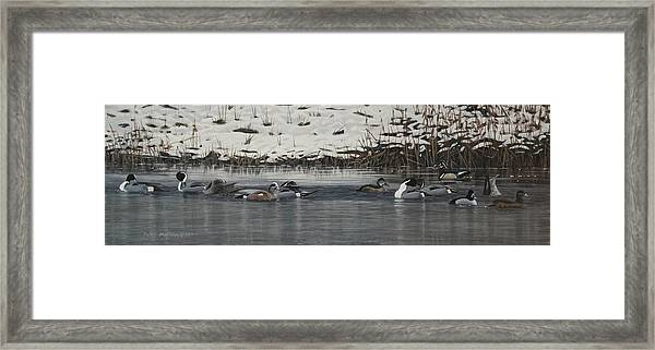 Winter Flock Framed Print