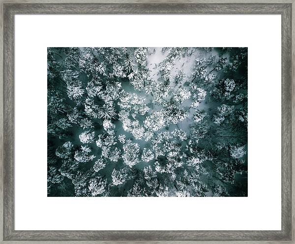 Winter Forest - Aerial Photography Framed Print