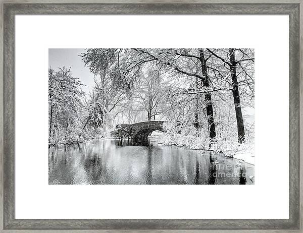 Winter In Boston's Franklin Park Framed Print