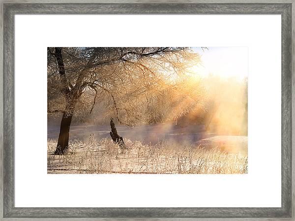 Winter Landscape Frosty Day On The Framed Print
