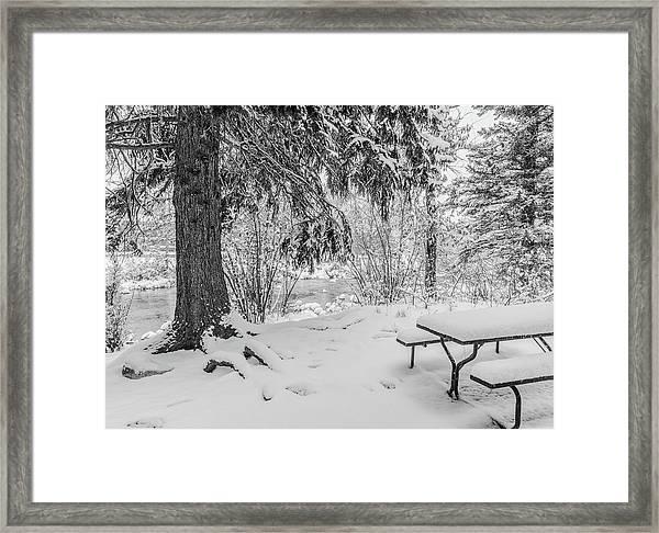Winter Picnic Framed Print