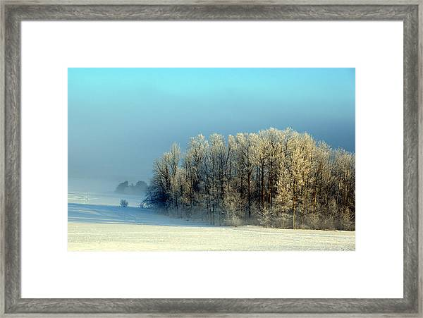 Winter's Heavy Frost Framed Print