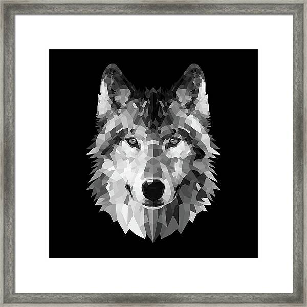 Wolf's Face Framed Print