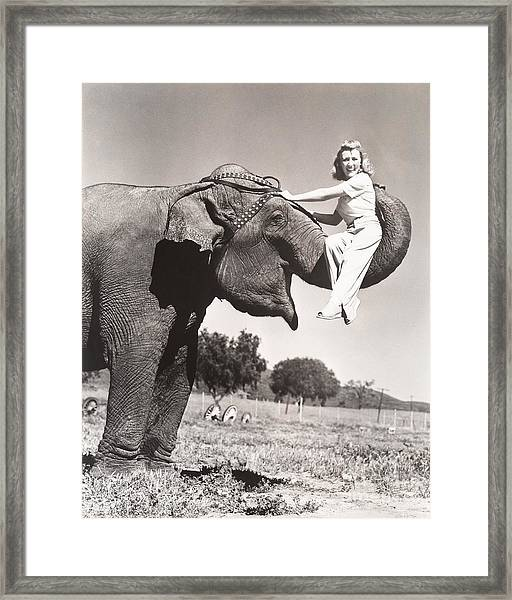 Woman Sitting On Elephants Trunk Framed Print