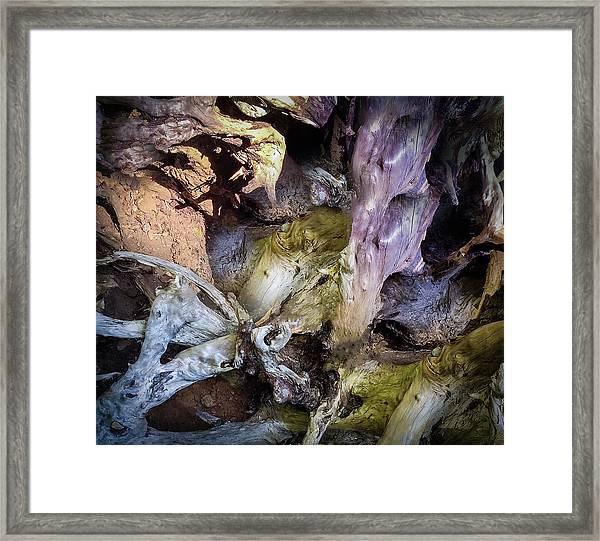 Framed Print featuring the photograph Wood Log In Nature No.9  by Juan Contreras