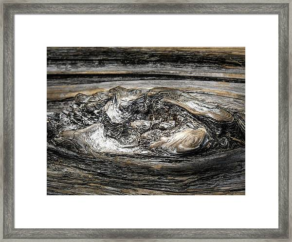 Framed Print featuring the photograph Wood Skine by Juan Contreras
