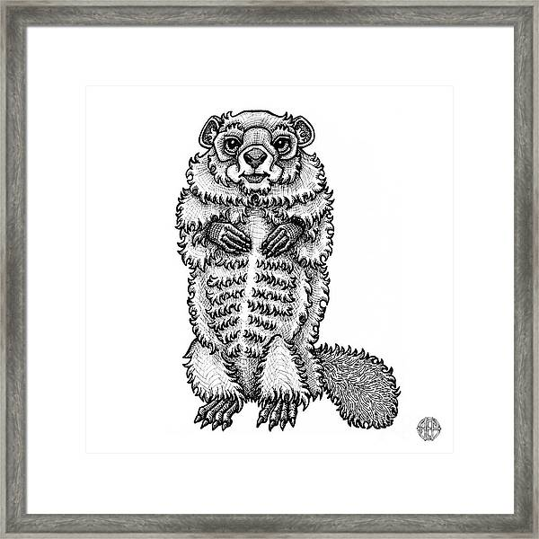 Framed Print featuring the drawing Woodchuck by Amy E Fraser