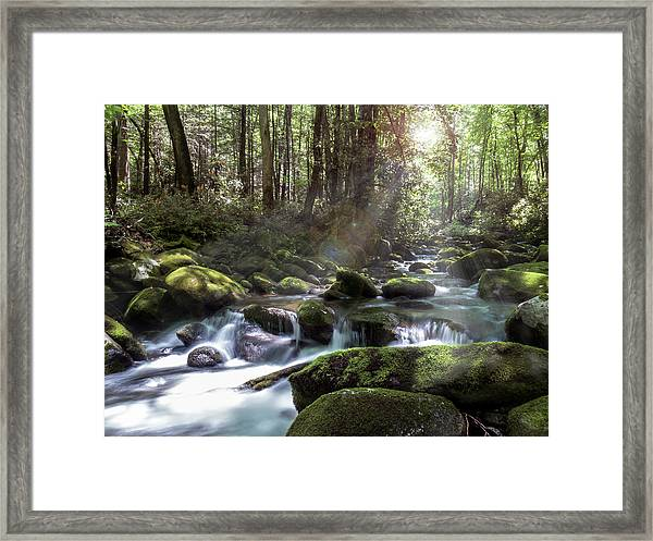 Framed Print featuring the photograph Woodland Falls by Patti Deters
