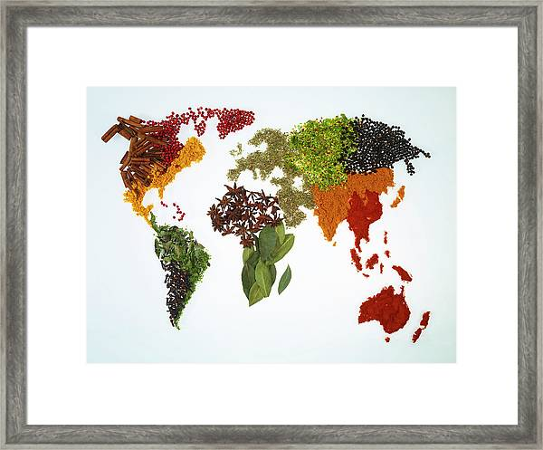 World Map With Spices And Herbs Framed Print by Yamada Taro