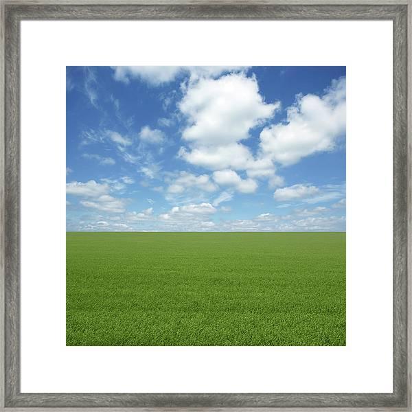 Xxl Green Grass Field Framed Print