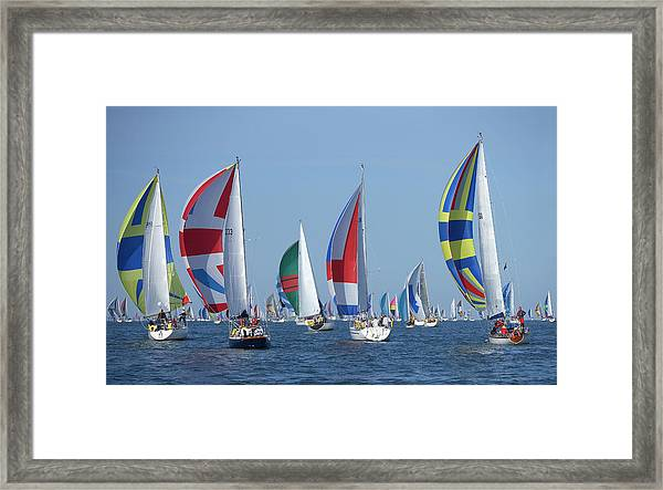 Yachts Flying Spinnakers During Race Framed Print