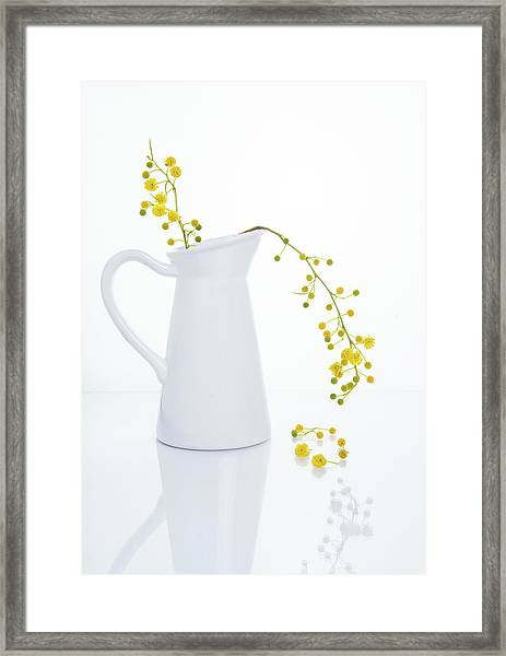 Yellow Beautiful Flowers On A White Vase. Framed Print