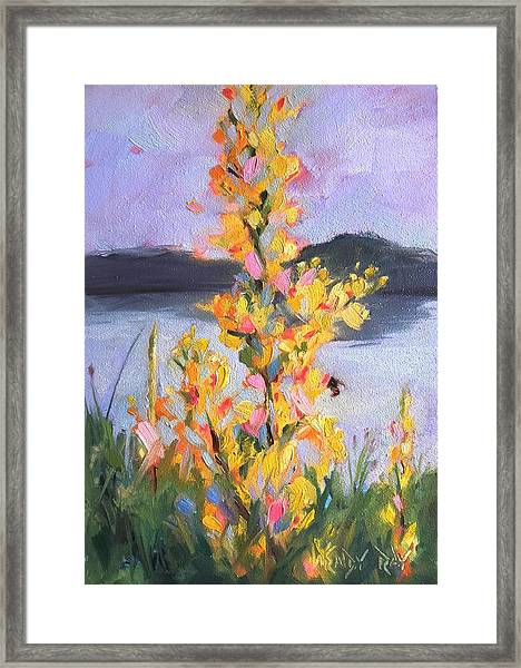 Yellow Blaze Framed Print