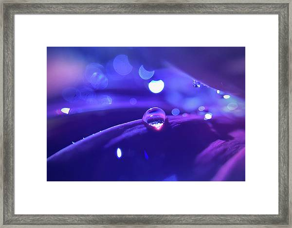 You Know What They're Singing About Tonight Framed Print