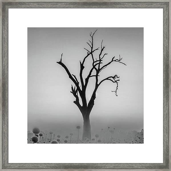 You'll Never Walk Alone  Framed Print by Az Jackson