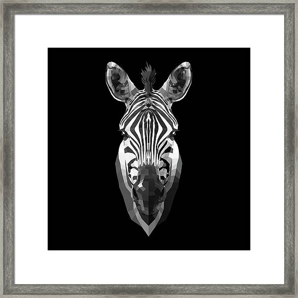 Zebra's Face Framed Print