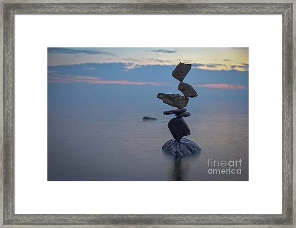 Ziggy Framed Print