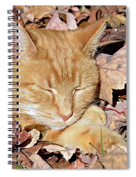 Autumn Dreaming Spiral Notebook