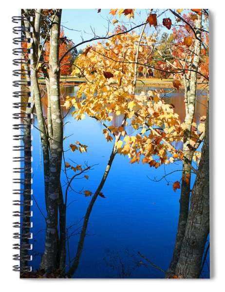 Autumn Trees On The Lake Spiral Notebook