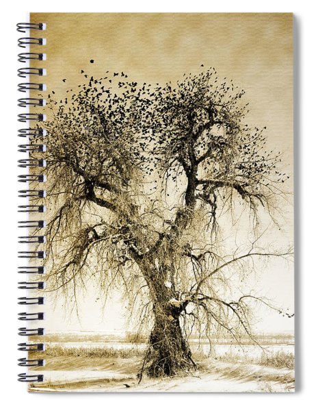 Bird Tree Fine Art  Mono Tone And Textured Spiral Notebook