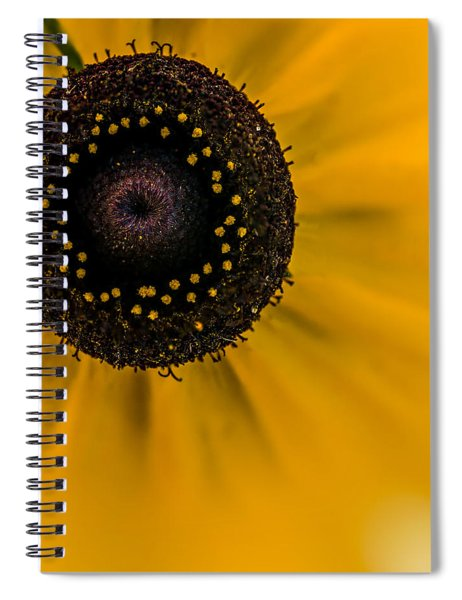 Looking At You Kid Spiral Notebook