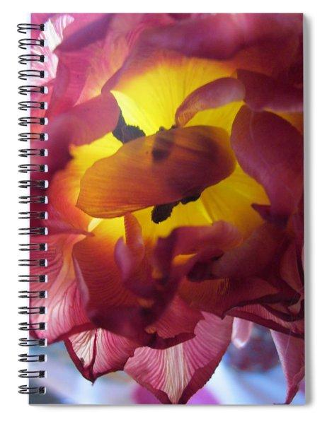 Rip Spiral Notebook