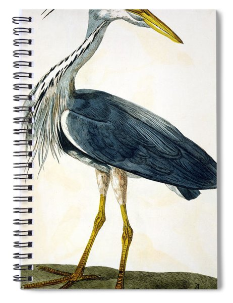 The Heron  Spiral Notebook