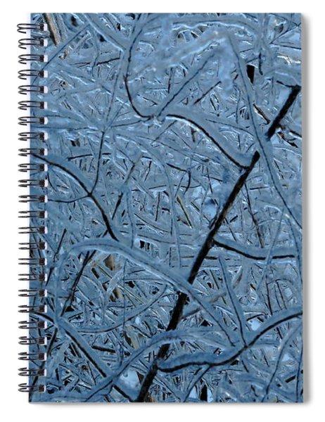 Vegetation After Ice Storm  Spiral Notebook
