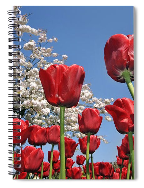 090416p031 Spiral Notebook