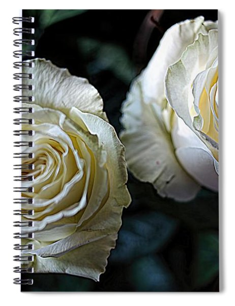 A Perfect Pair Spiral Notebook