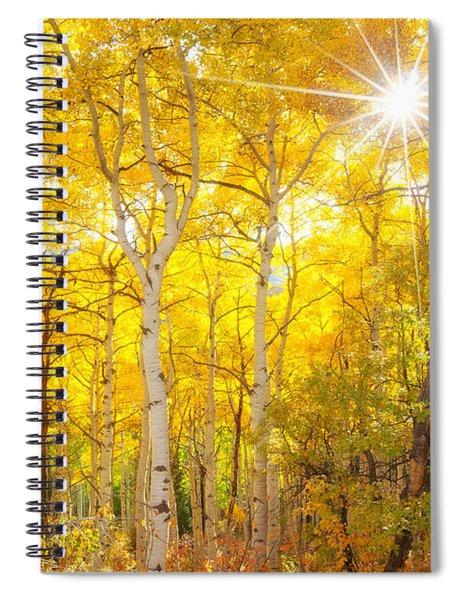 Aspen Morning Spiral Notebook