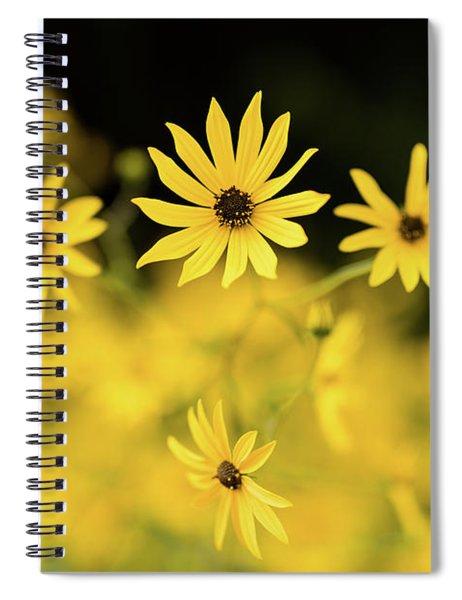 Black-eyed Susans In Bloom, Atlanta Spiral Notebook