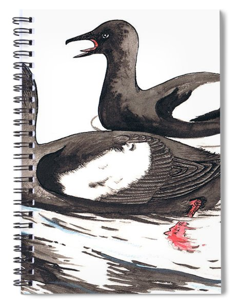 Black Guillemot Spiral Notebook