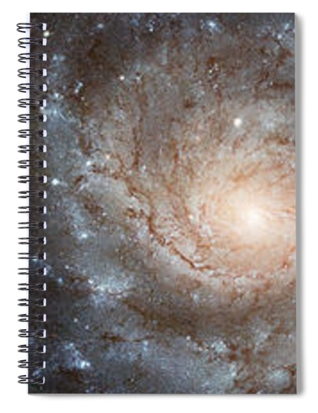 Cabbage With Galaxy And Pink Flowers Spiral Notebook