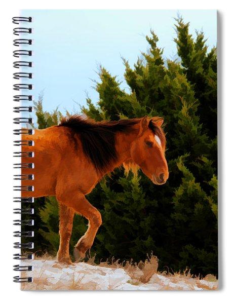 Carrot Island Pony Spiral Notebook