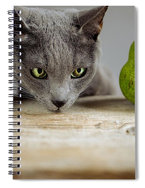 Cat And Pears Spiral Notebook