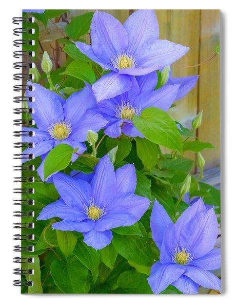 Clematis  Spiral Notebook