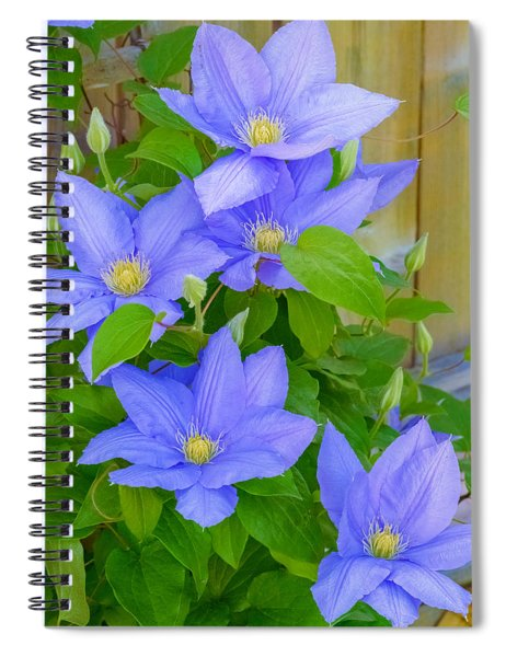 Spiral Notebook featuring the photograph Clematis  by Garvin Hunter