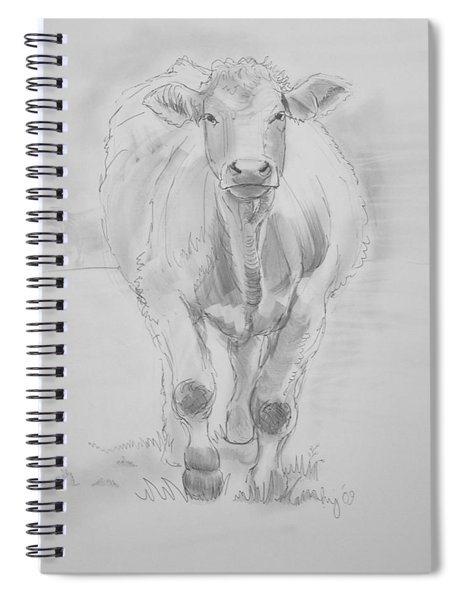Cow Drawing Spiral Notebook