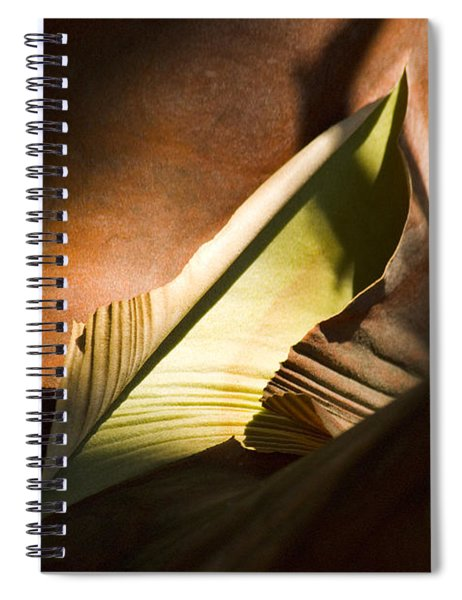 Cycle Of Life Spiral Notebook