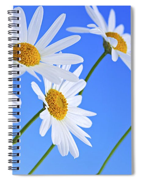 Daisy Flowers On Blue Background Spiral Notebook