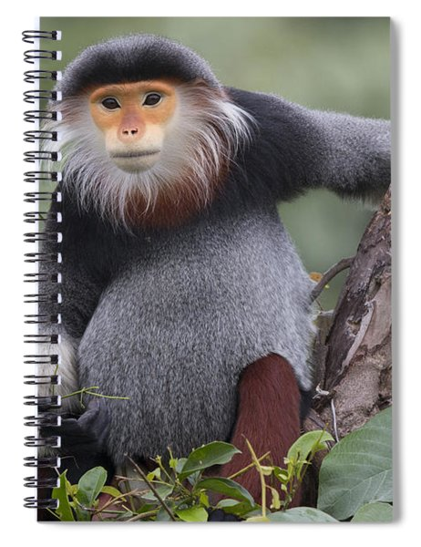 Douc Langur Male Vietnam Spiral Notebook