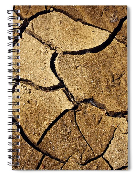 Dry Land Spiral Notebook