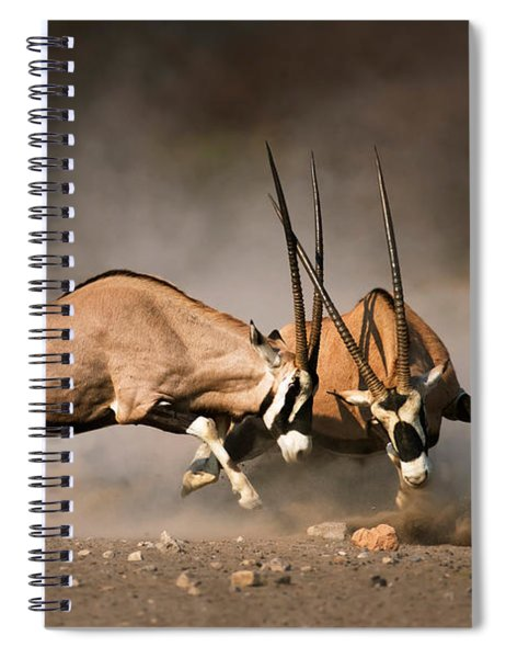Gemsbok Fight Spiral Notebook