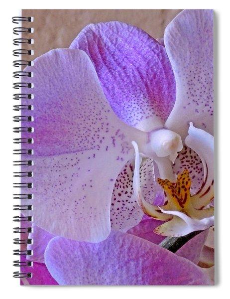 Grace And Elegance Spiral Notebook