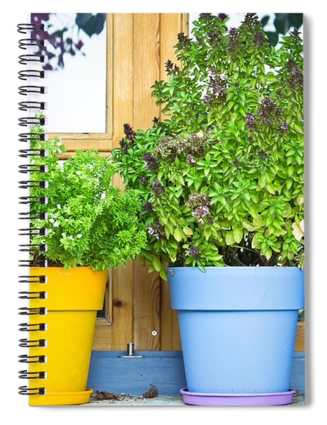 Greek Basil Spiral Notebook