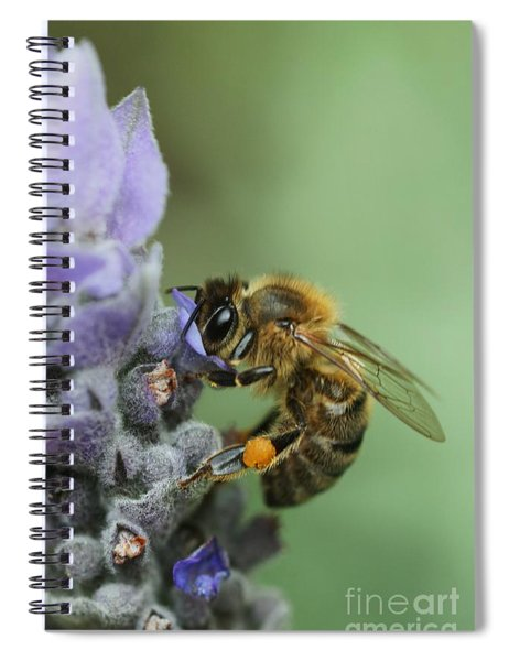 Happy Bee Spiral Notebook