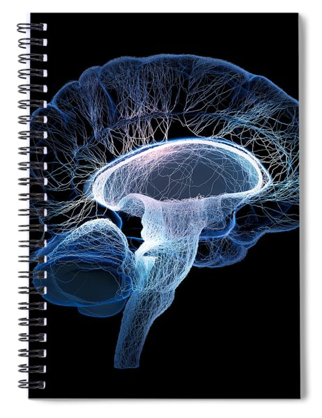 Human Brain Complexity Spiral Notebook