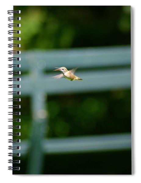 Hummer In Flight Spiral Notebook