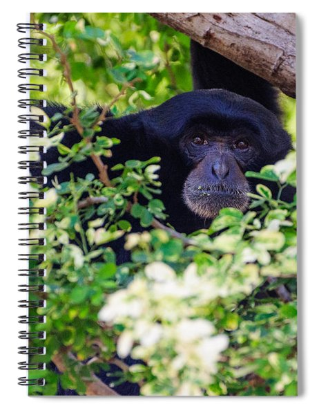 I See You Spiral Notebook